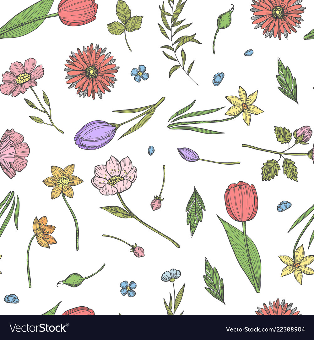 Hand drawn flowers pattern or background