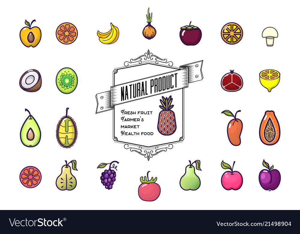 Set colorful fruit icons isolated on a white
