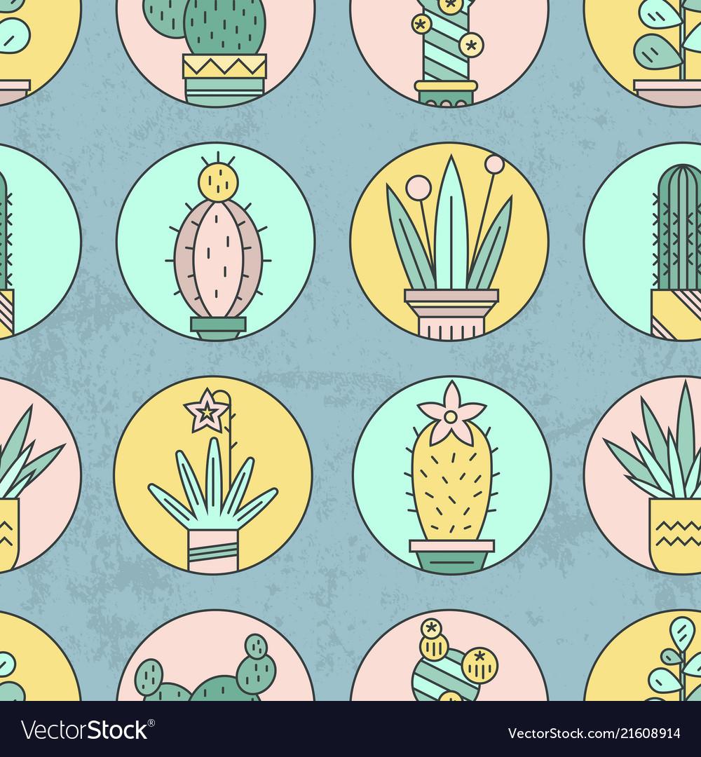 Cactus background