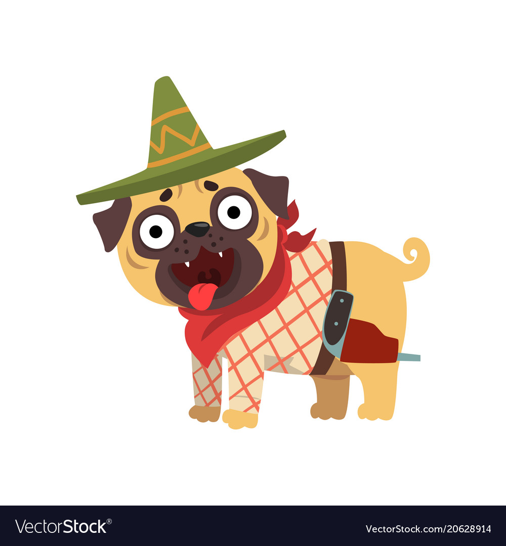 Funny pug dog character wearing mexican sombrero
