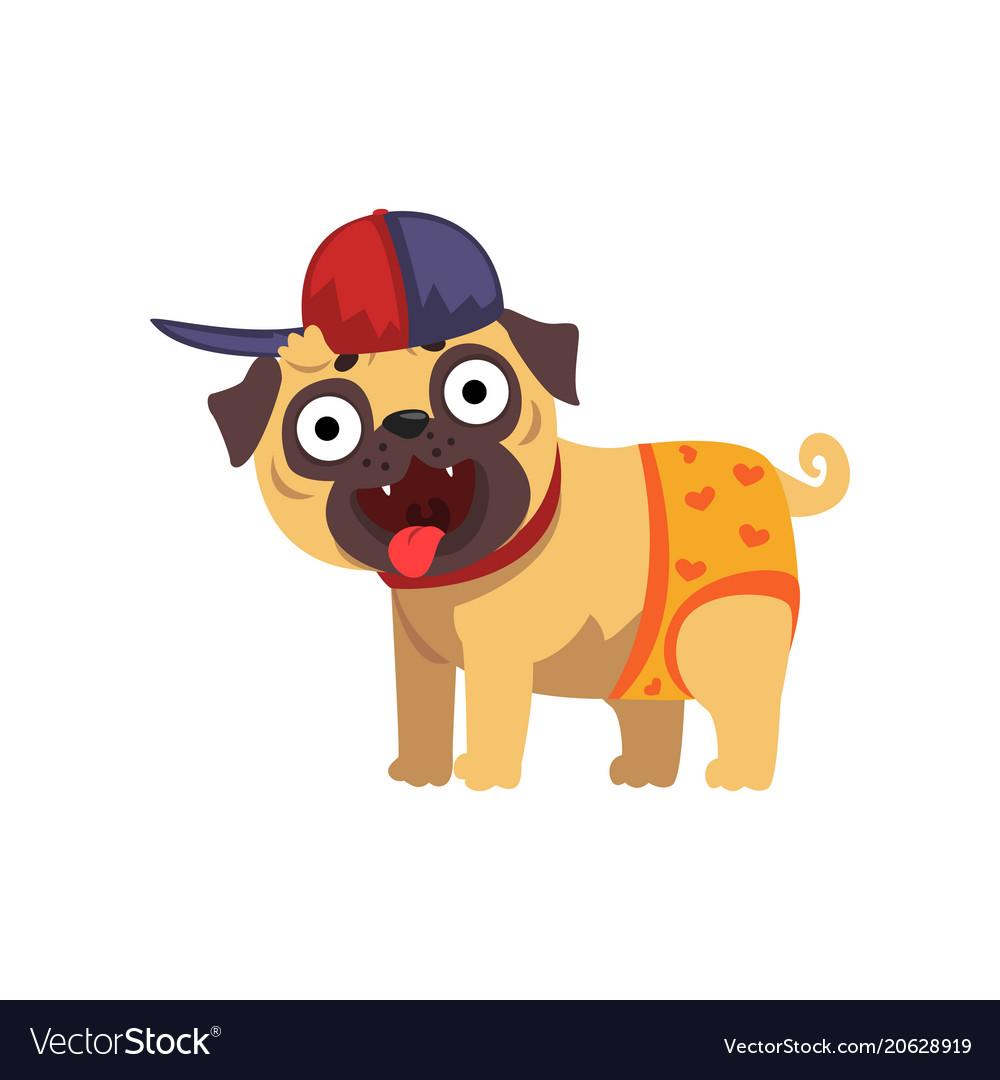 Funny pug dog character wearing in baseball cap