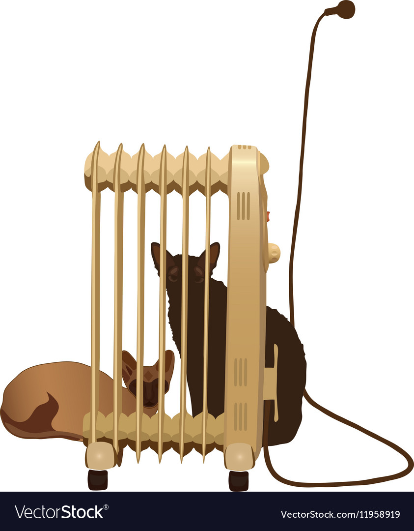 Two cats basking near the heater isolated vector image