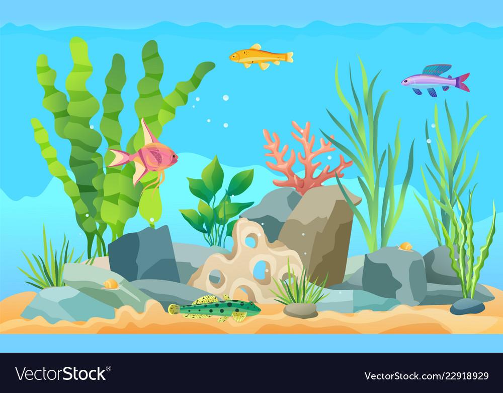 Colorful Cartoon Aquarium Fish Set Promo Poster