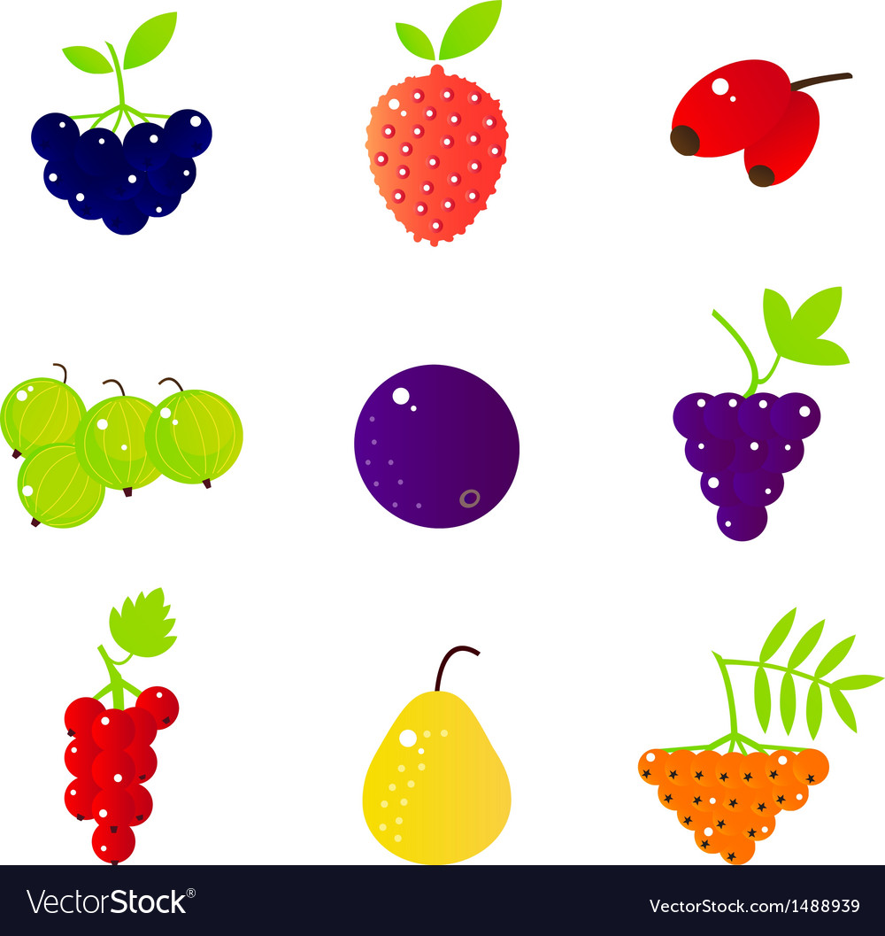 Fresh summer berries and exotic fruit set isolated