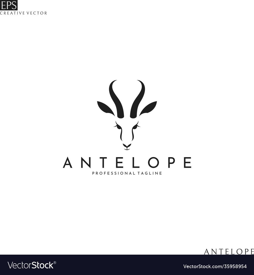 Antelope springbok head logo template