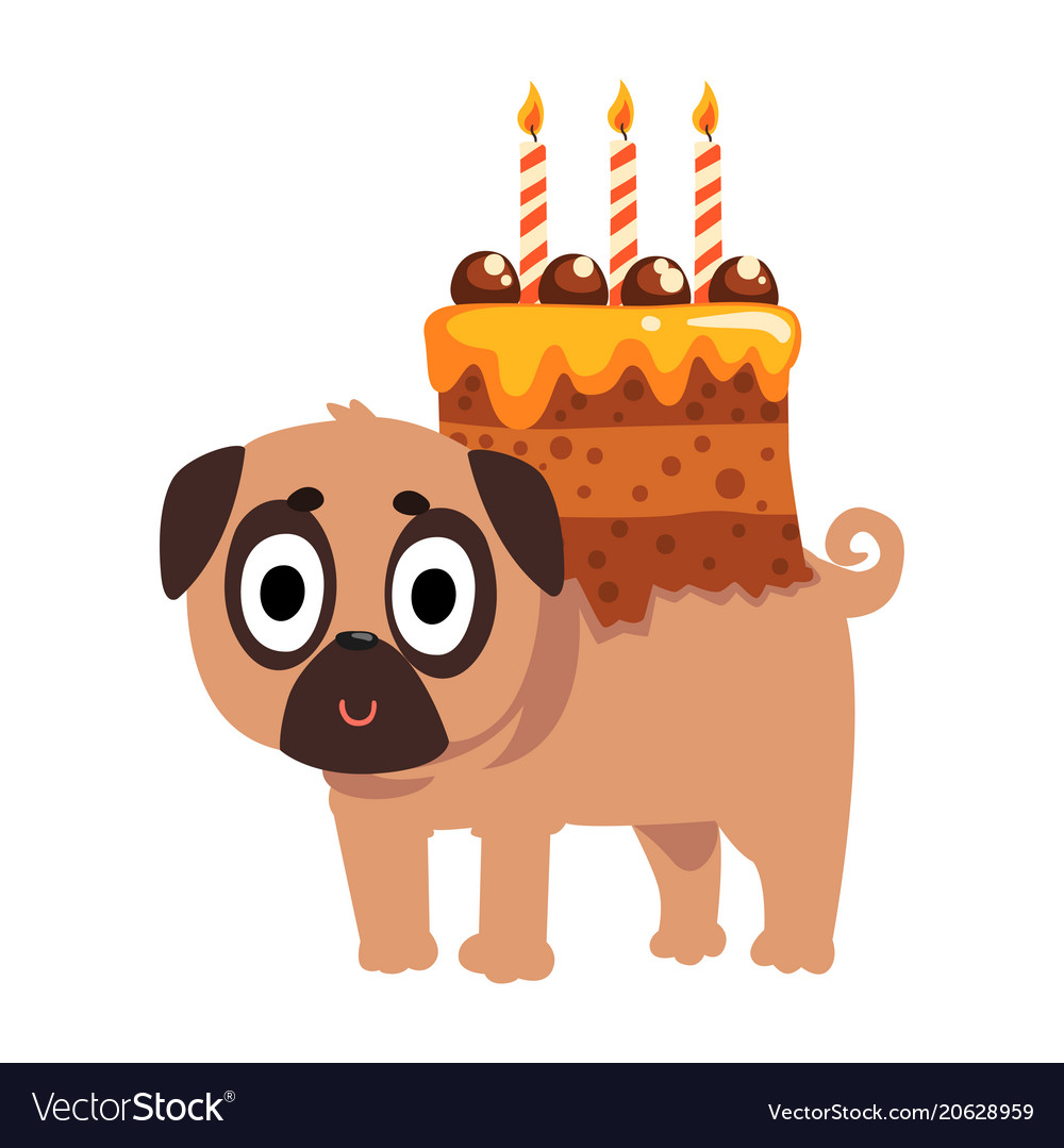 Cute funny pug dog character with a festive cake