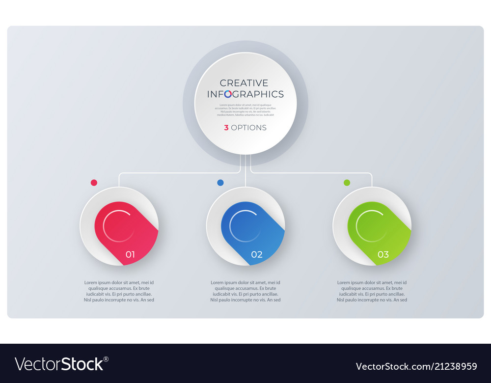Modern style structure chart infographic design vector image