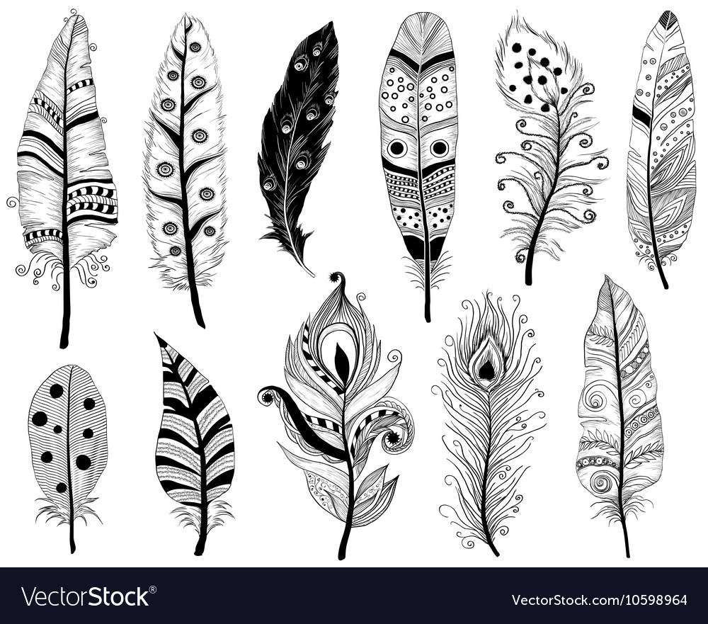 Hand Drawn Doodles of Ethnic feathers