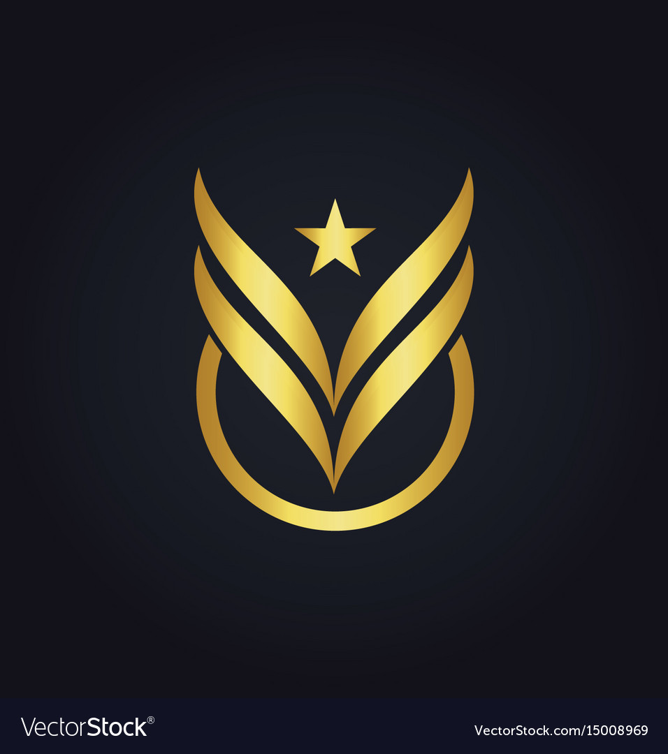 Star fly wing victory abstract gold logo