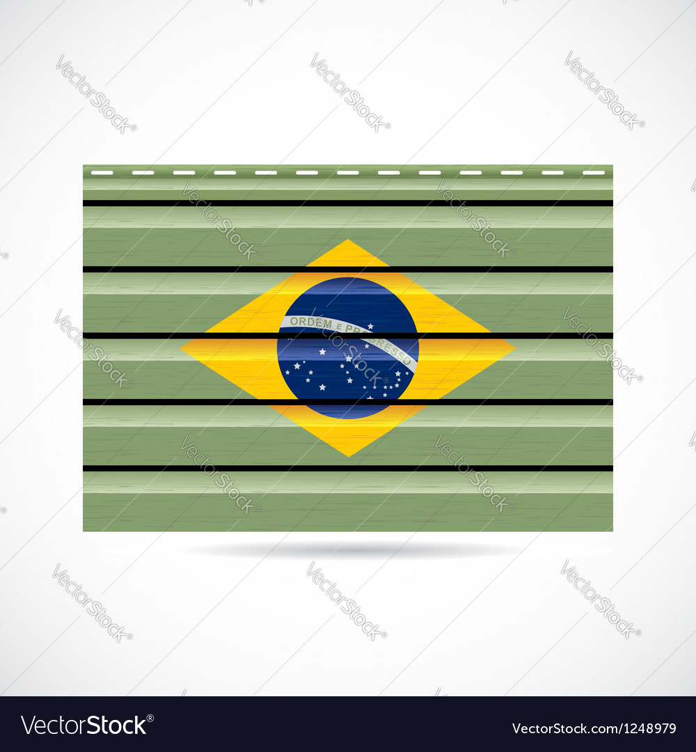 Brazil siding produce company icon vector image