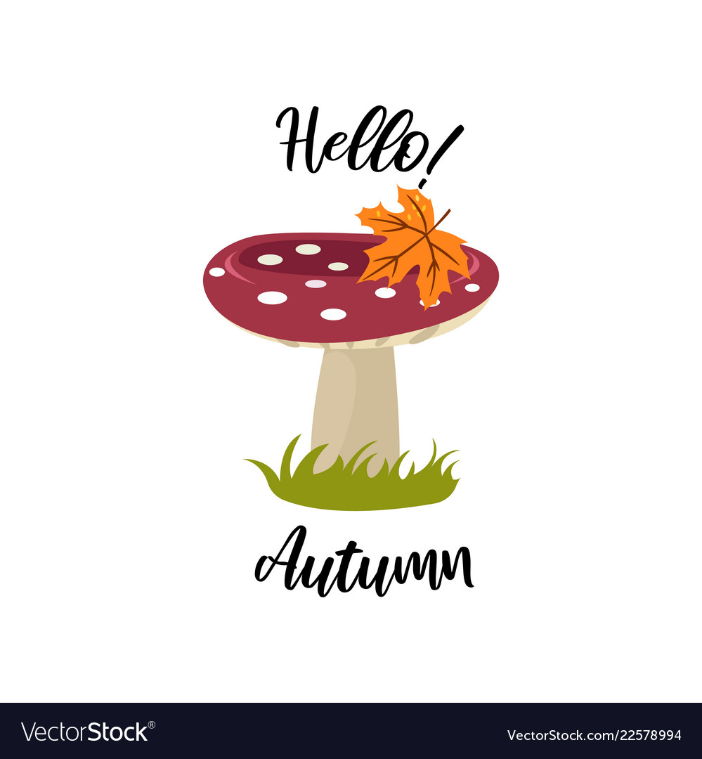 Autumn time colorful juicy autumn icons with