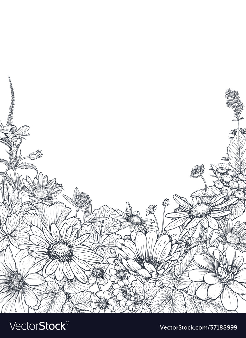 Floral backgrounds with hand drawn wildflowers