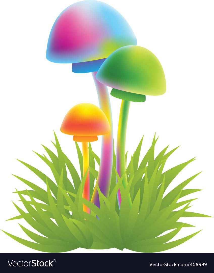 Magic mushrooms vector image