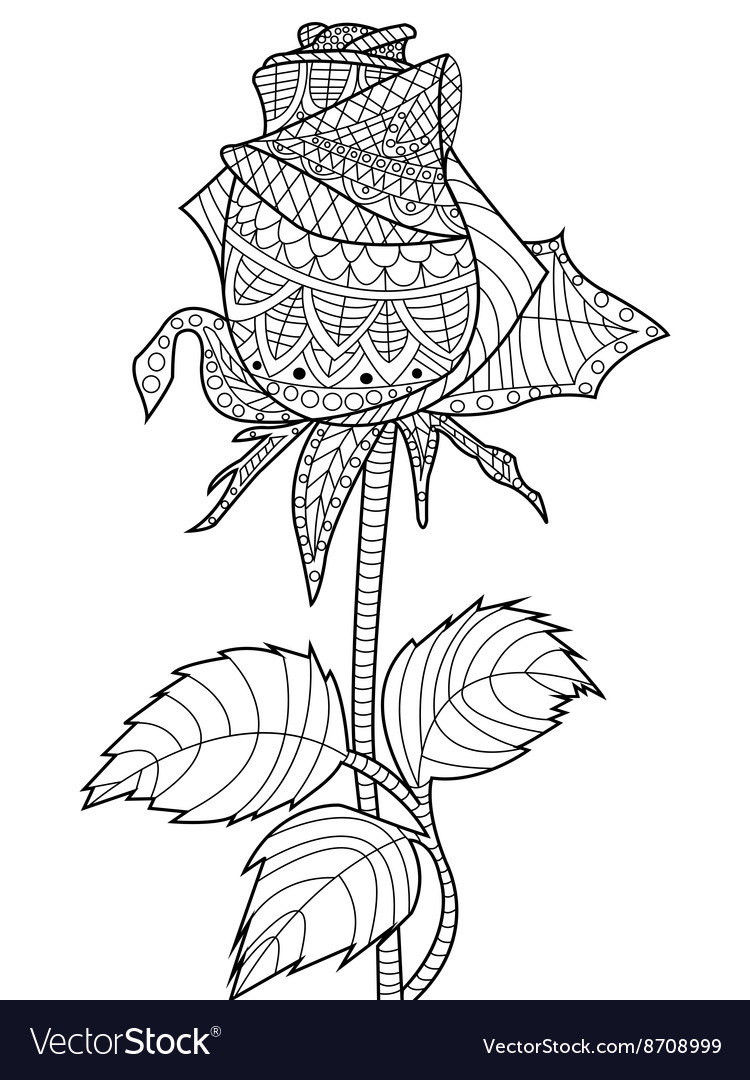 910 Coloring Book Rose Free Images
