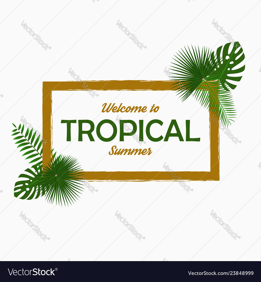 Tropical card design with - palm leaves