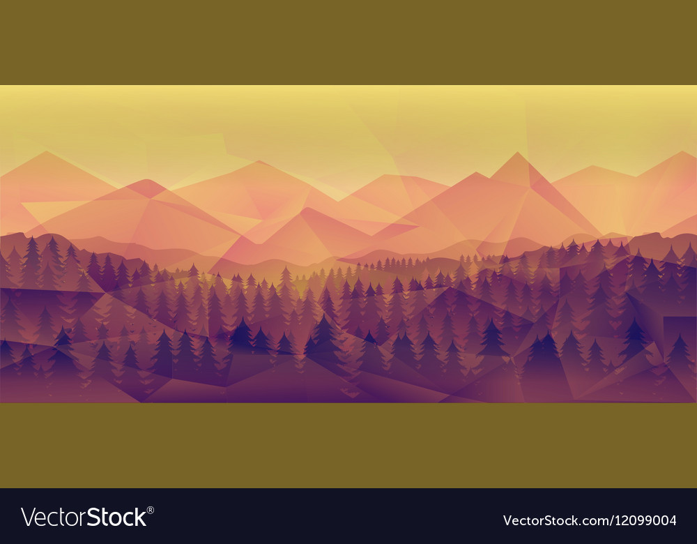 Forest landscape nature background