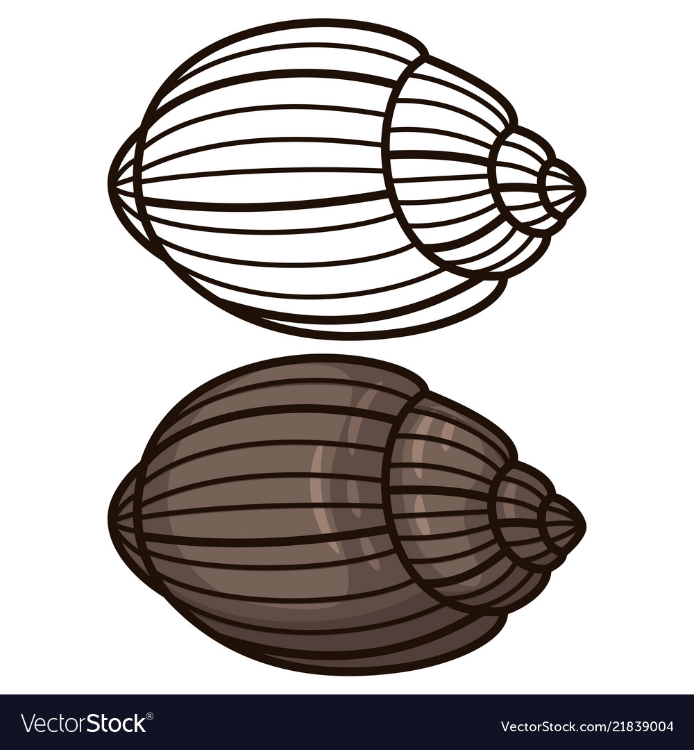 Outline seashell coloring page and flat icon
