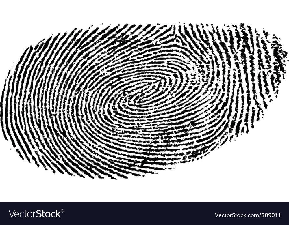 fingerprint royalty free vector image vectorstock rh vectorstock com fingerprinting victoria fingerprinting victoria