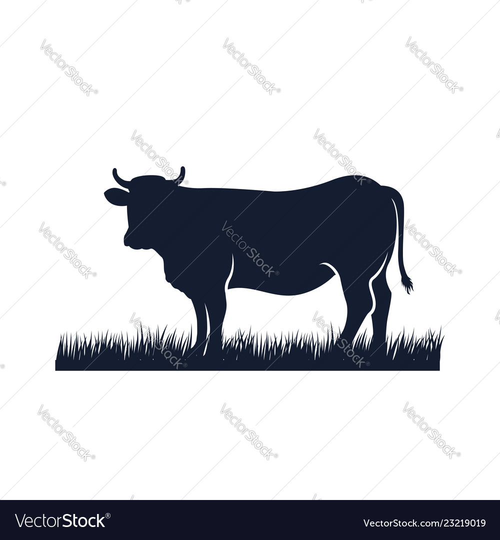 Cow silhouette icon black angus