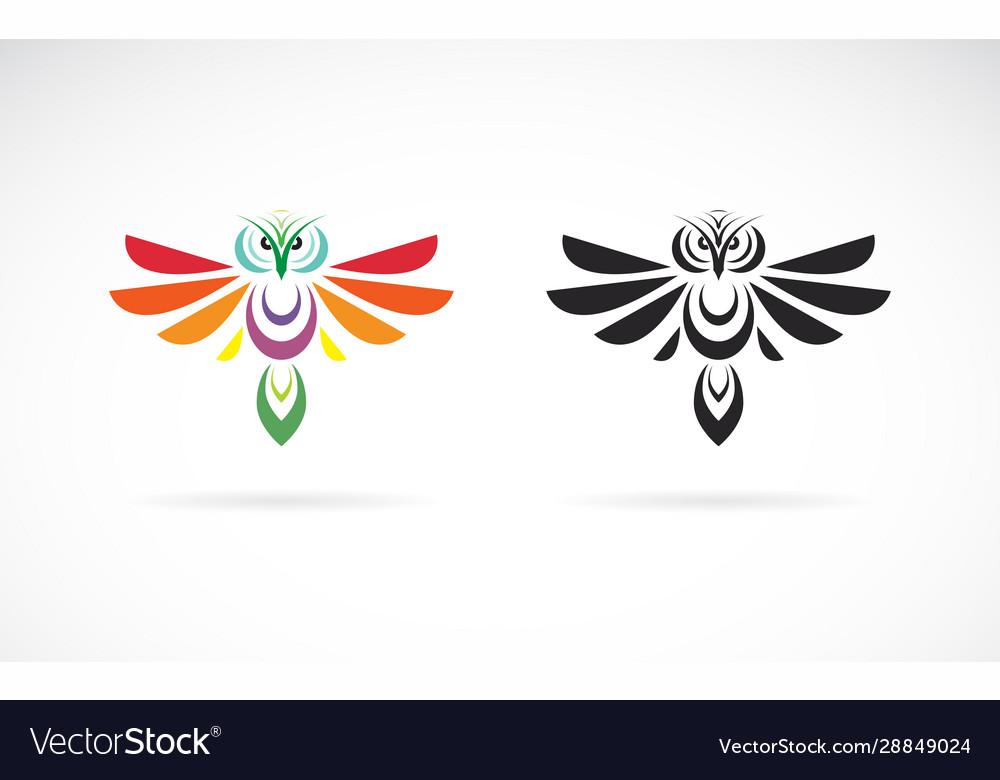 Owl design on a white background wild animals
