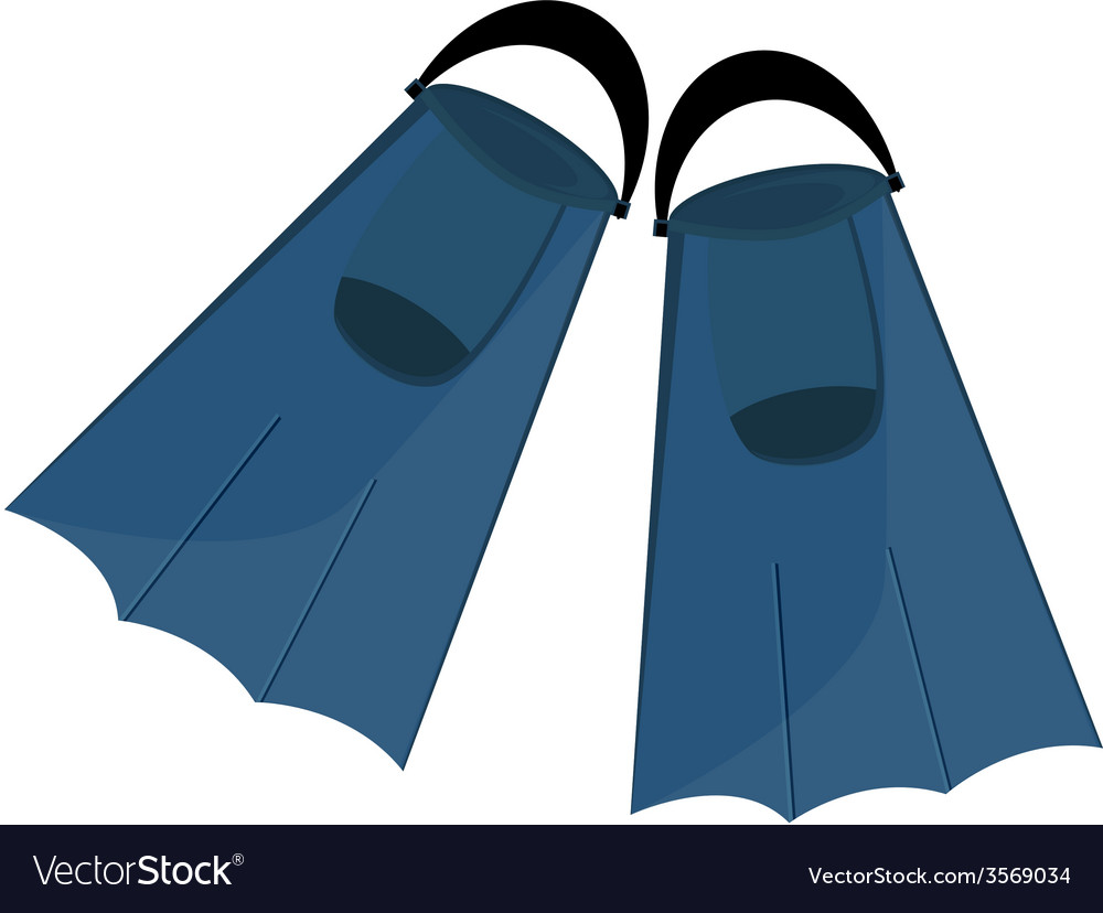 Blue flippers vector image