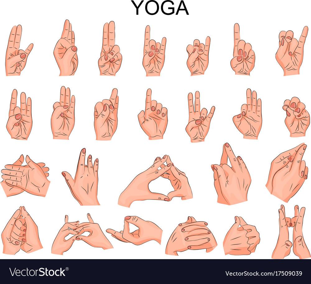 Yoga Hand Positions