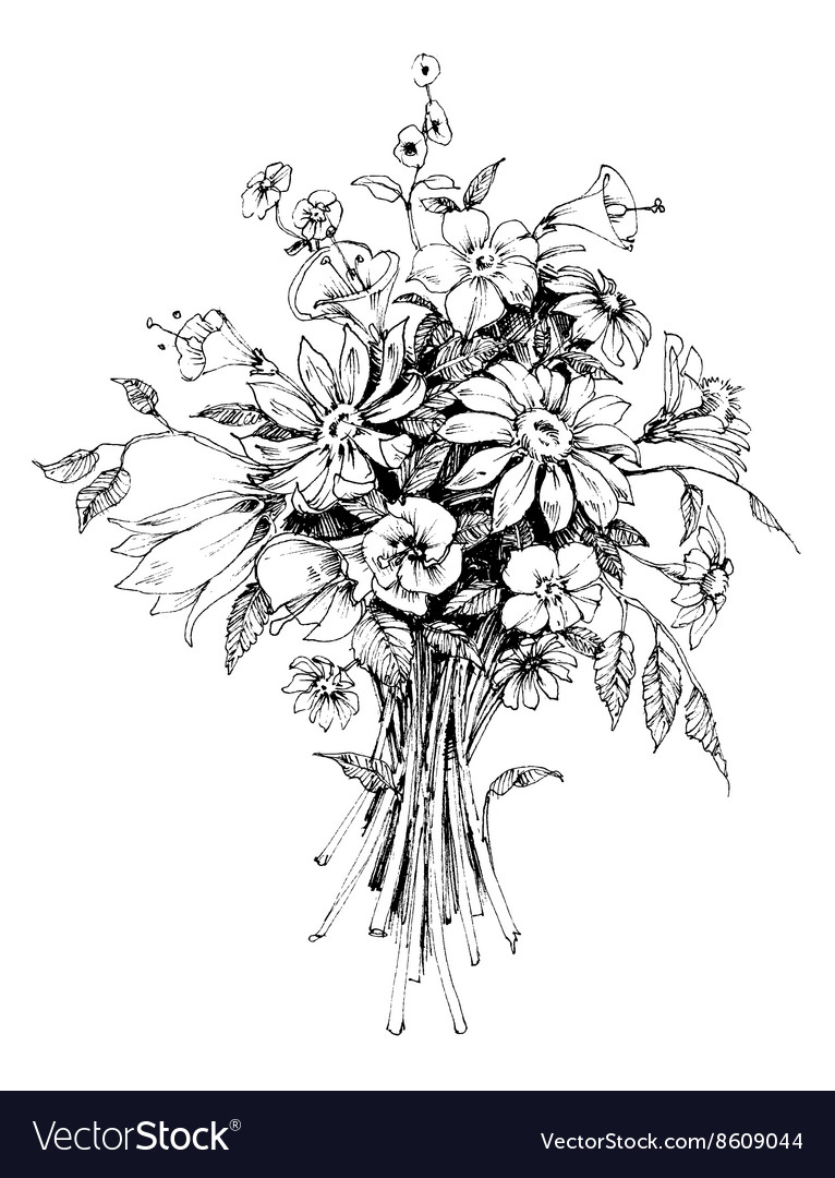 Bunch Of Flowers Bridal Bouquet Sketch Royalty Free Vector