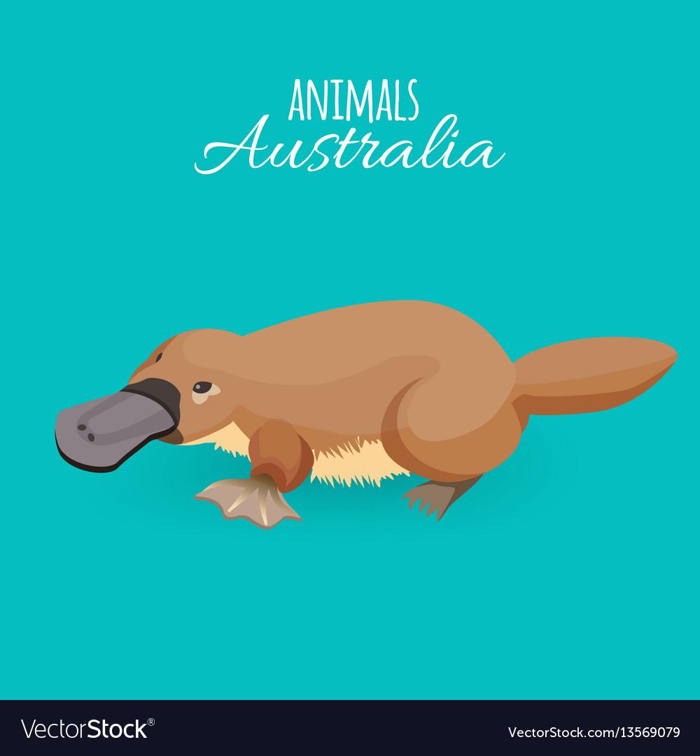 Australia animal brown crawling duckbilled