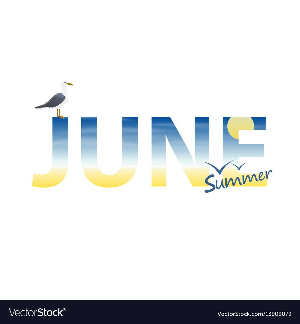 Banner year in june vector image