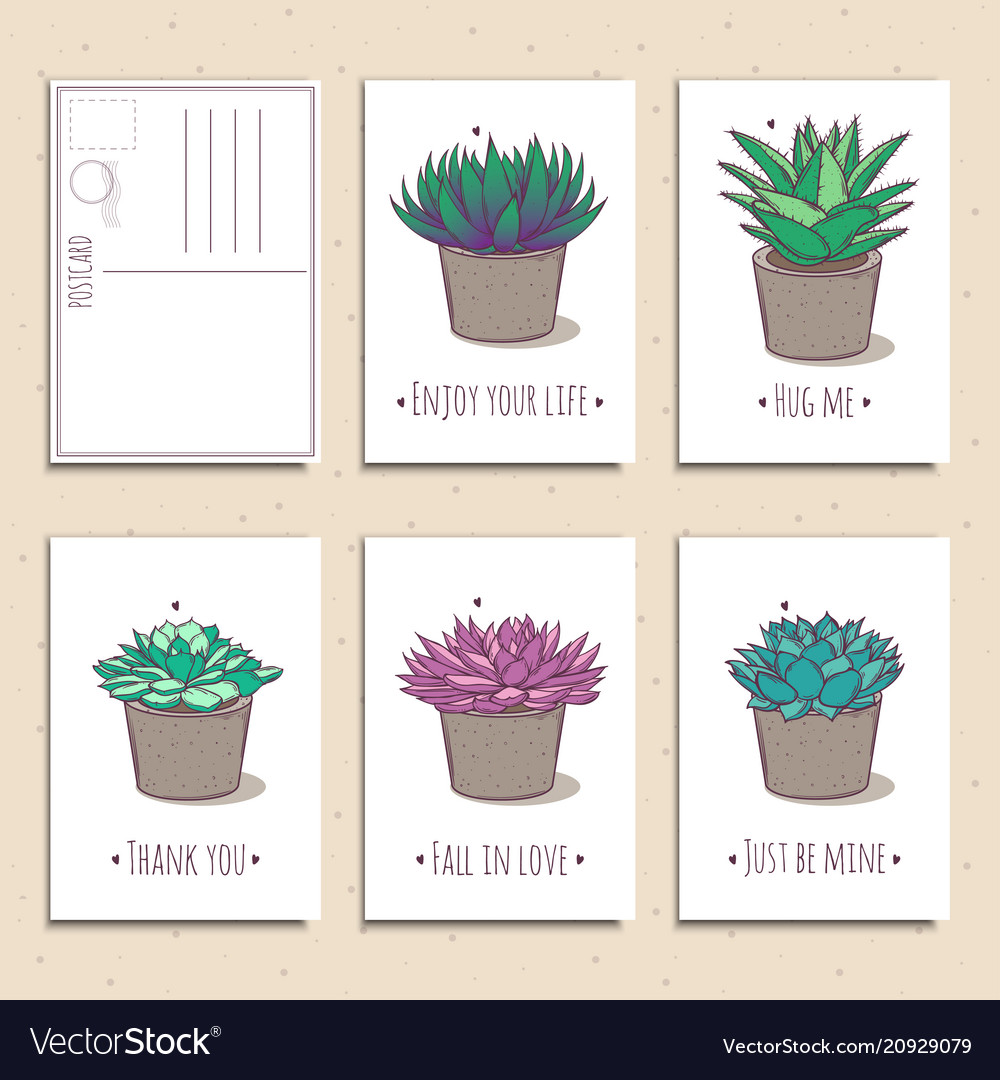 Set of ready-to-use gift postcards with succulents