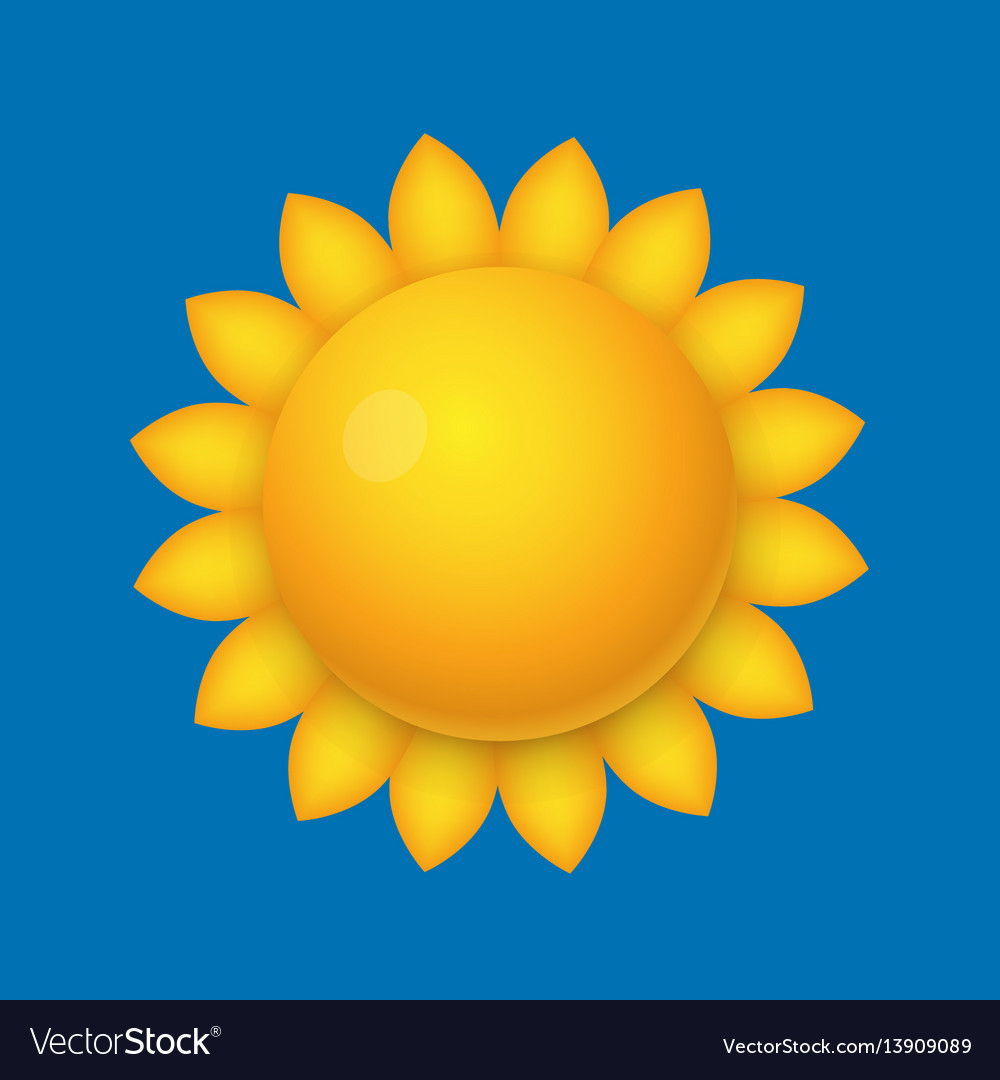 Cartoon sun sunflower shape vector image