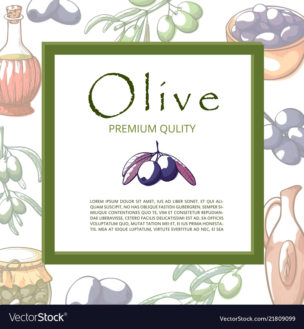 Olive oil banner with copy space for text