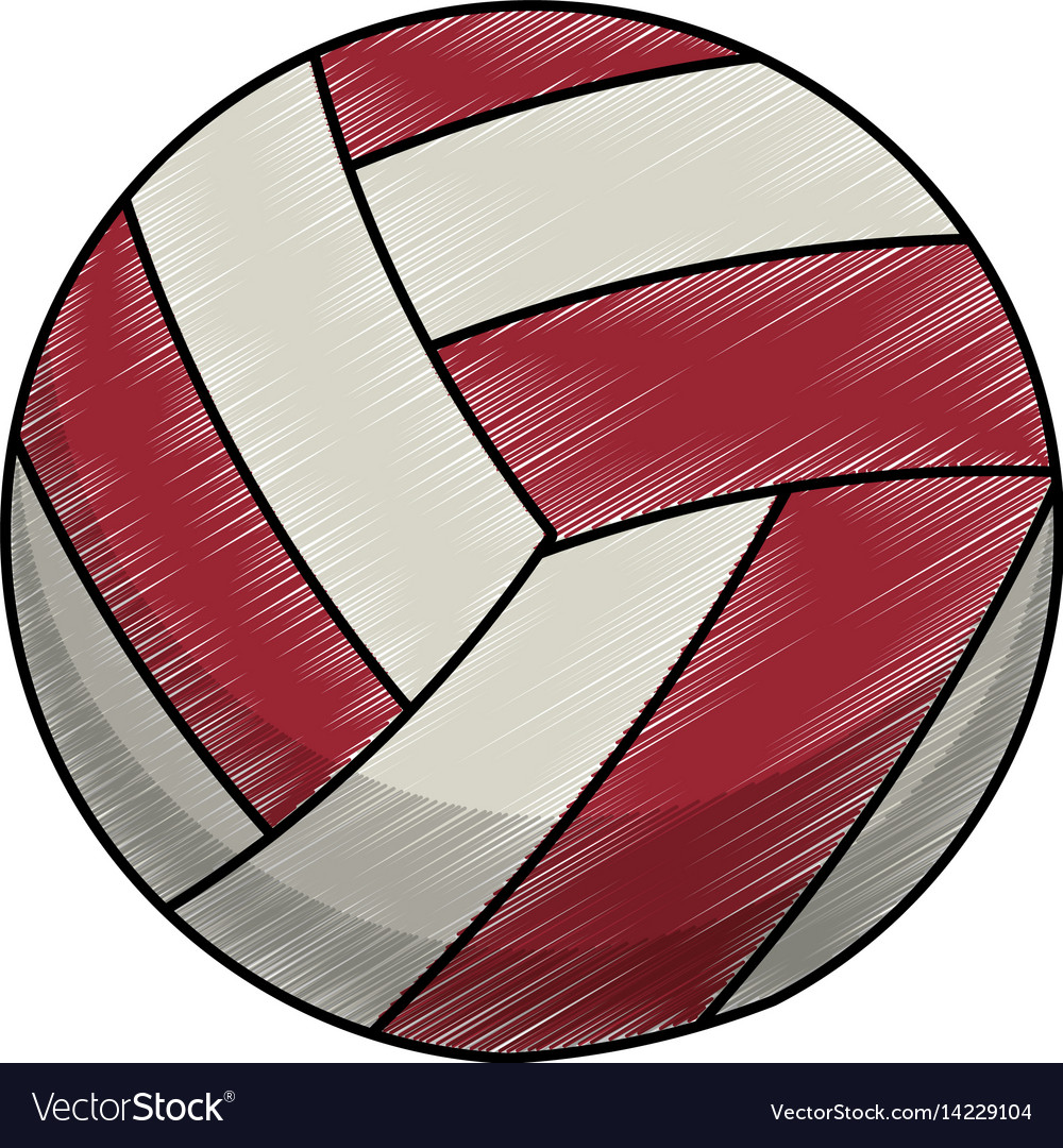 Drawing volleyball ball equipment vector image