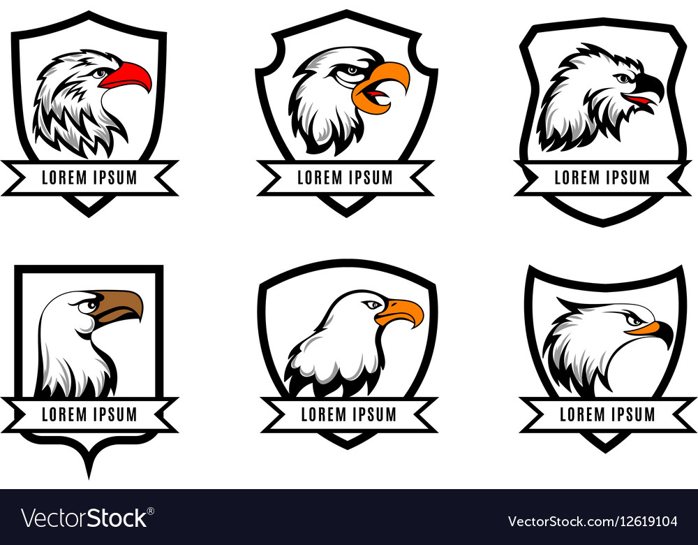 Eagle or american falcon heads with shields logo