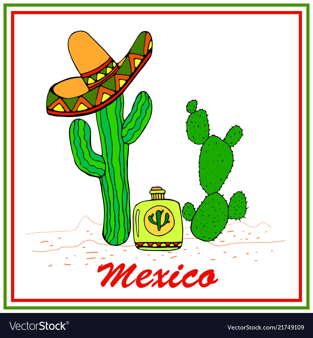 Funny cactuses in sombrero with tequila colorful