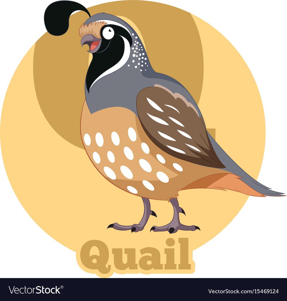 Abc cartoon quail
