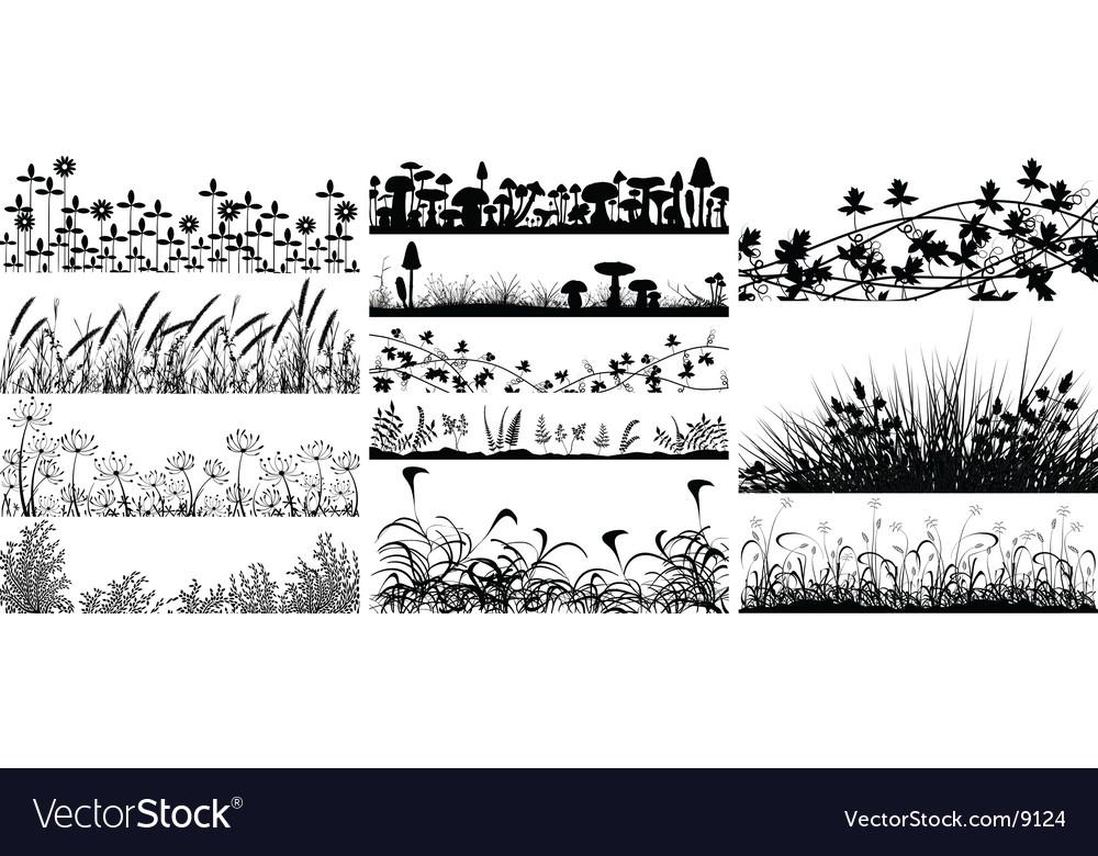 Vegetation vector image