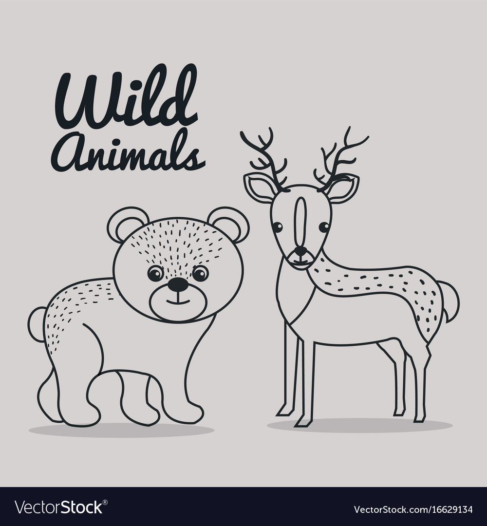 Hand drawn bear and deer uncolored wild animals