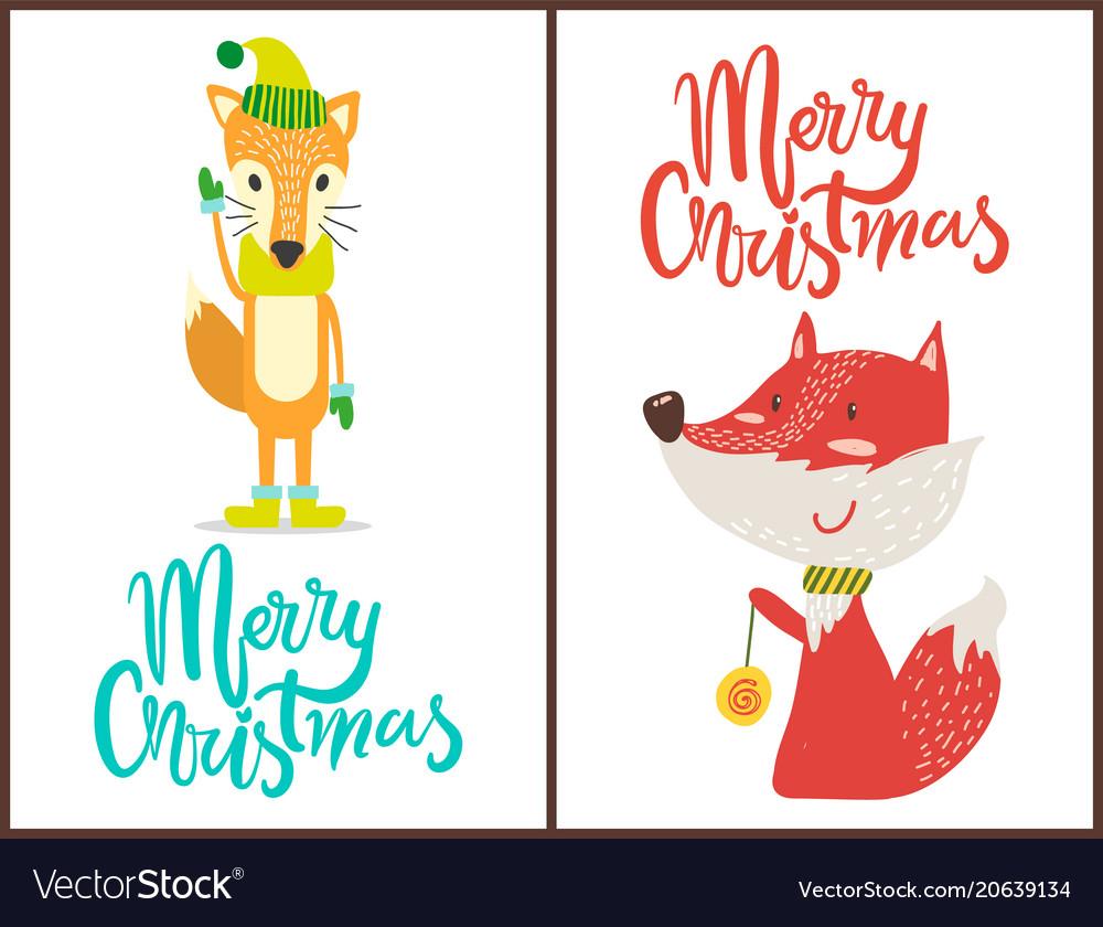 Merry christmas fox set on