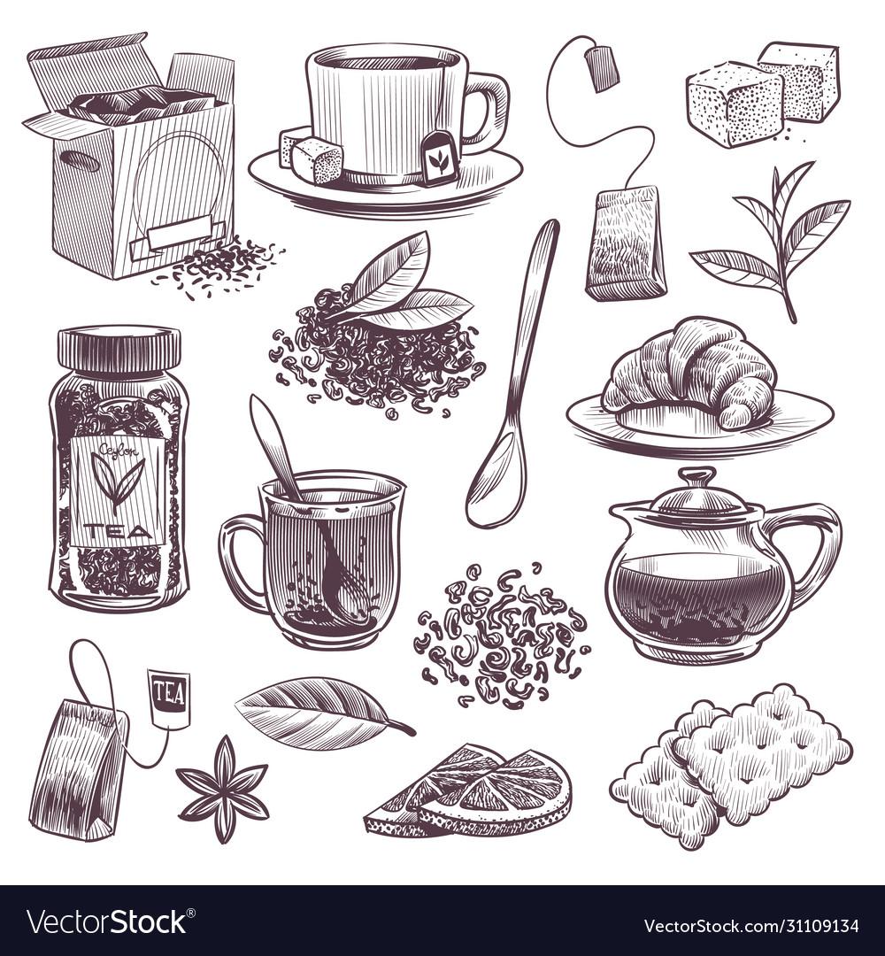 Sketch tea hand drawn tea leaves mugs