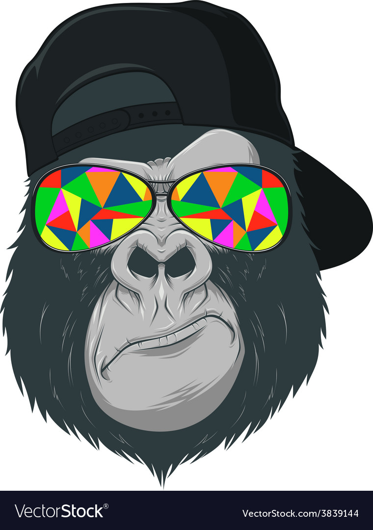 Monkey with glasses vector image