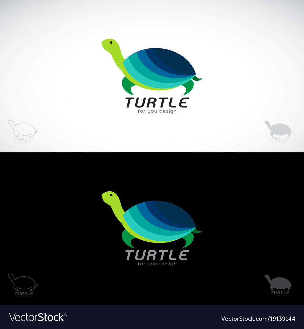 Turtle design on white background and black