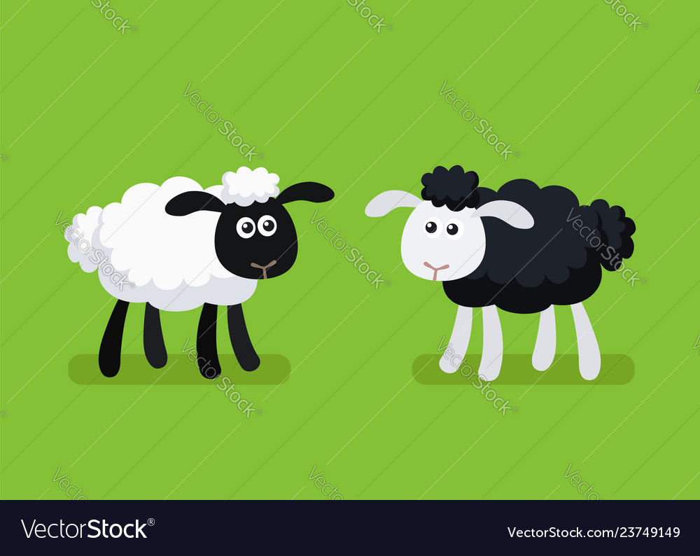 Black and white sheep standing on green background