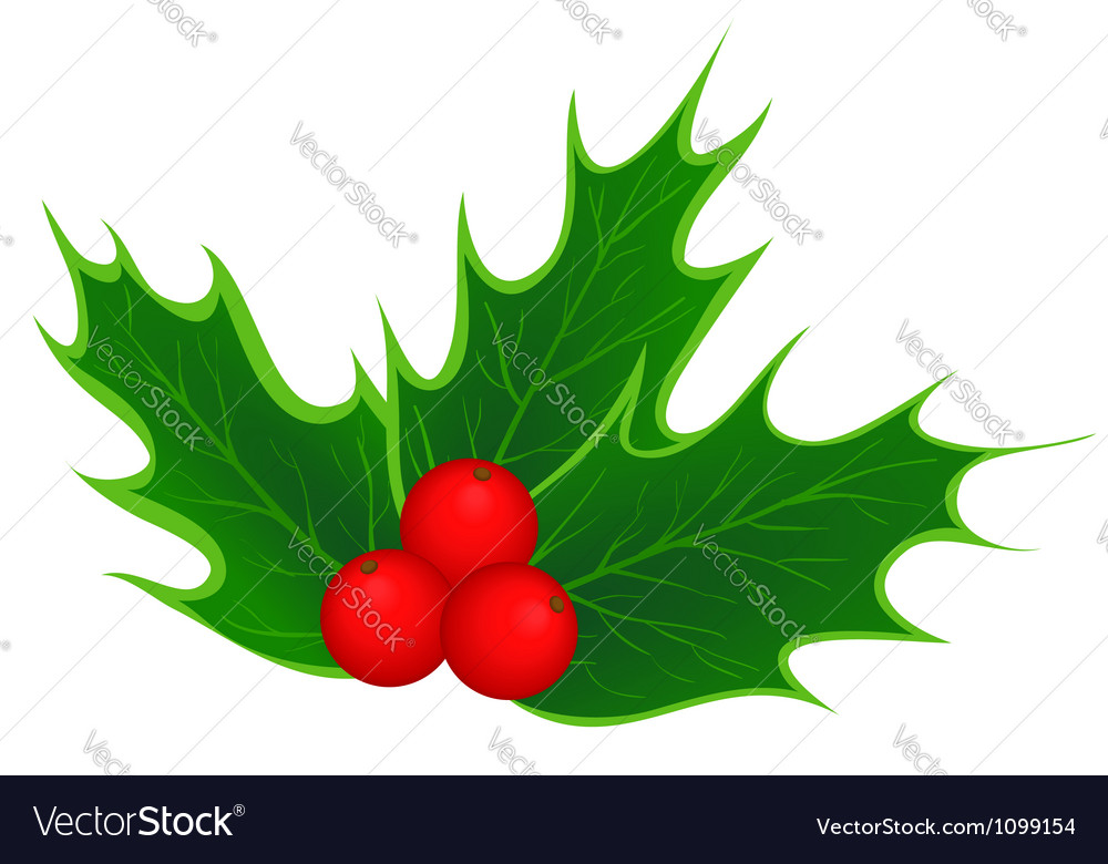 Christmas Leaves.Traditional Christmas Holly Leaves And Berries