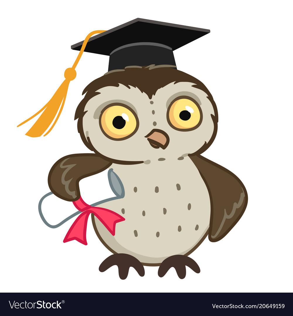owl in graduation cap cartoon royalty free vector image