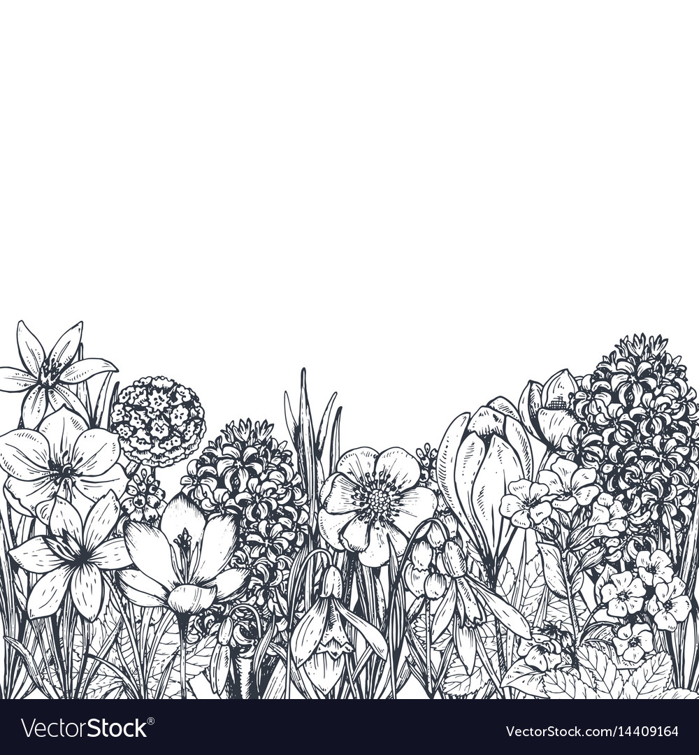 Floral backgrounds with hand drawn spring flowers
