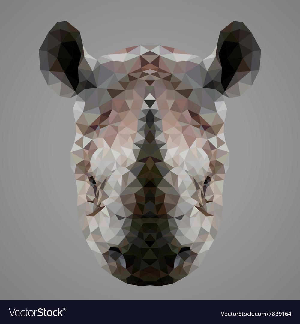 Rhinoceros low poly portrait vector image