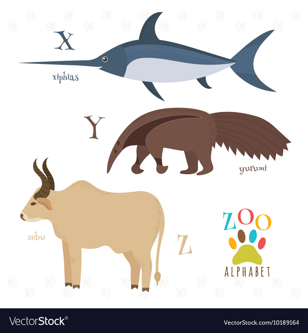 Zoo Alphabet With Funny Cartoon Animals X Y Z Vector Image