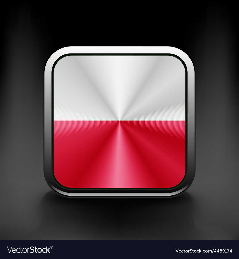 Flag of Poland glossy icon Button with Polish flag vector image