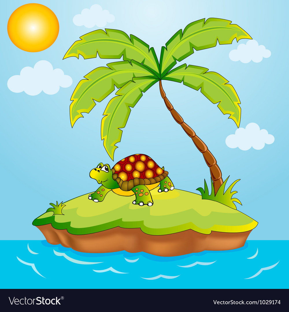 South island with palm and terrapin vector image